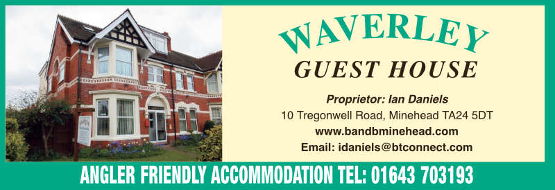 This image has an empty alt attribute; its file name is waverley-hotel-advert.png